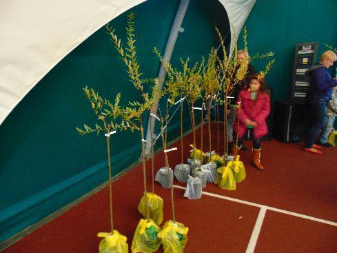 . Nagrody Naszych uczniów w konkursach i akcjach ekologicznych
